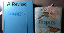 Large Print Inspire Bible: A Review